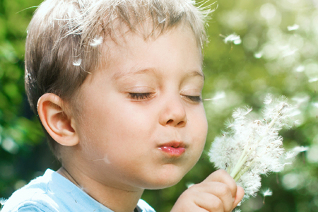 A boy outdoors with a dandelion clock