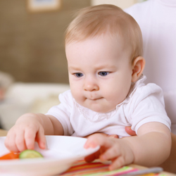 Young baby boy sitting on mother's lap eating from plate